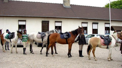 Poney club Normand